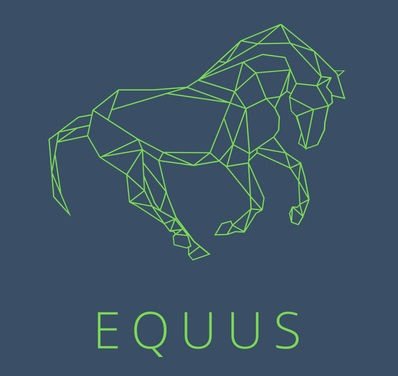 """2021. gads sācies ar vērtīgām lekcijām projektā """"Zirgu izmantošanas iespējas šodien un rīt. EQUUS."""""""
